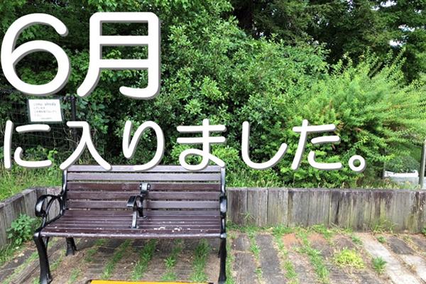 ブログ用eye 靭公園00表紙