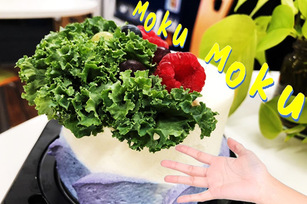 ブログ用eye新感覚ケーキ10
