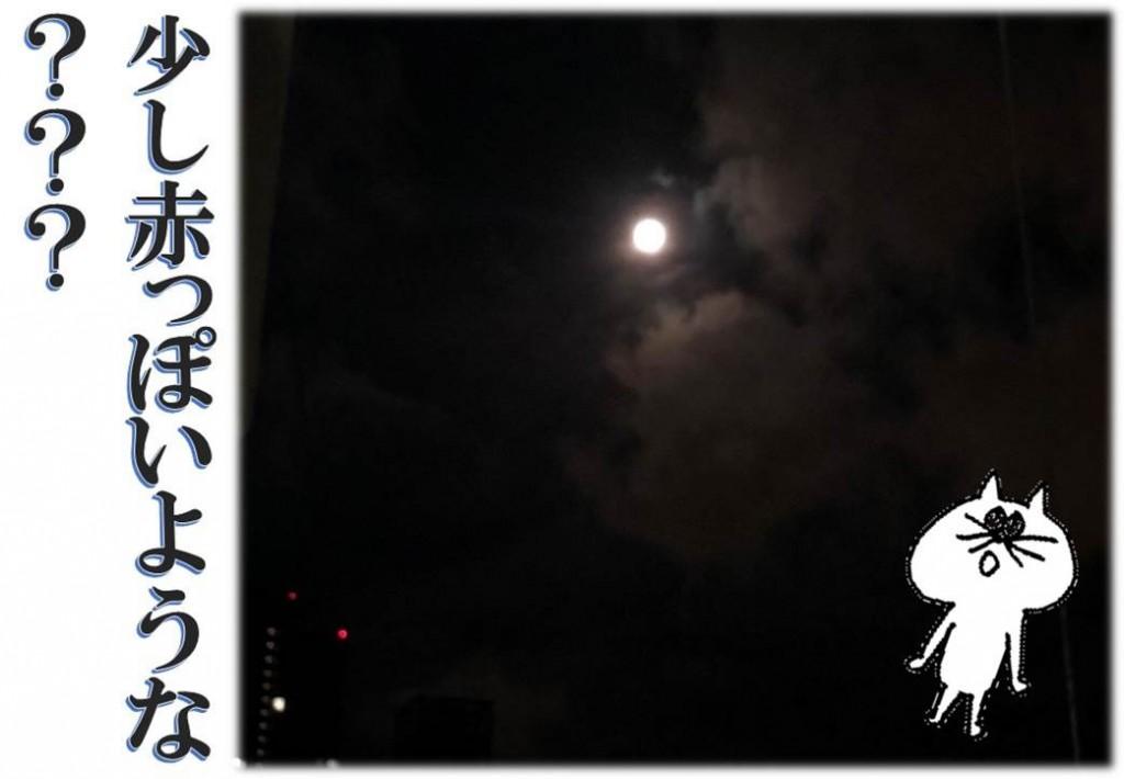 ブログ用eye moon 01
