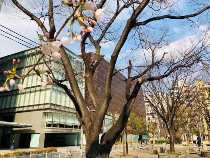 春到来!02